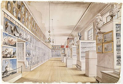 The Long Room, Interior of Front Room in Peales Museum, 1822 (wc over graphite on paper)