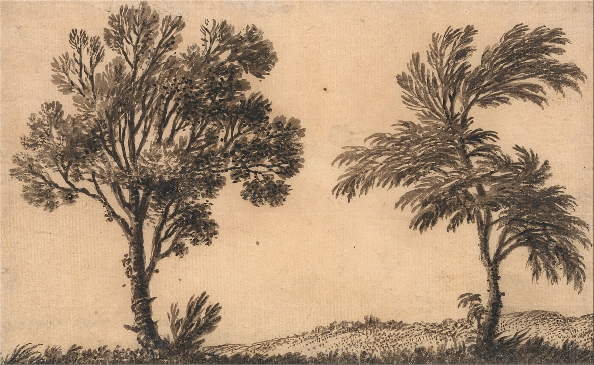 Study of Two Willows by Alexander Cozens