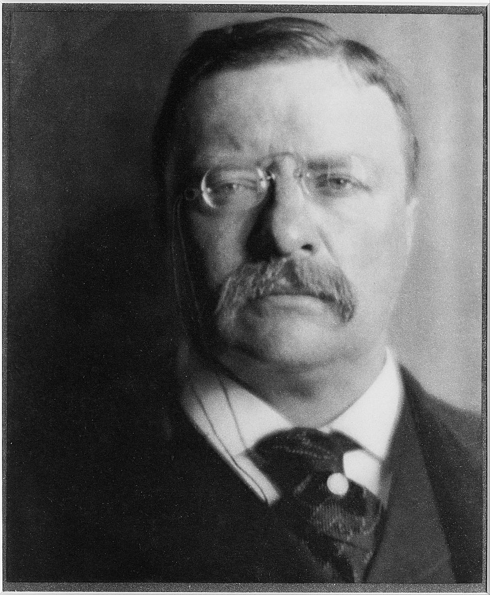 Theodore Roosevelt by Alvin Langdon Coburn