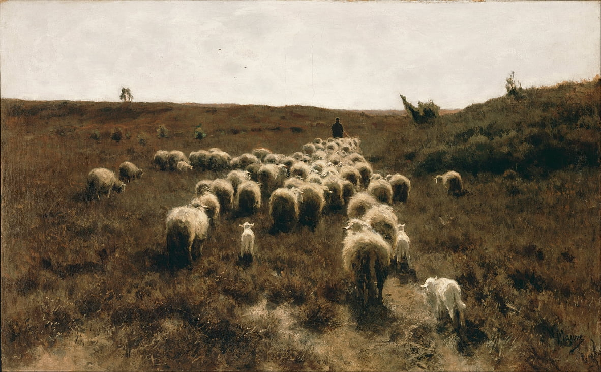 The return of the flock, Laren by Anton Mauve