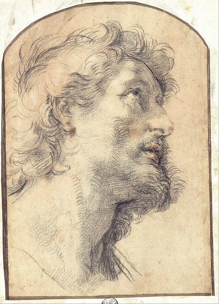 Study of the Head of Saint Crispin by Benedetto Luti