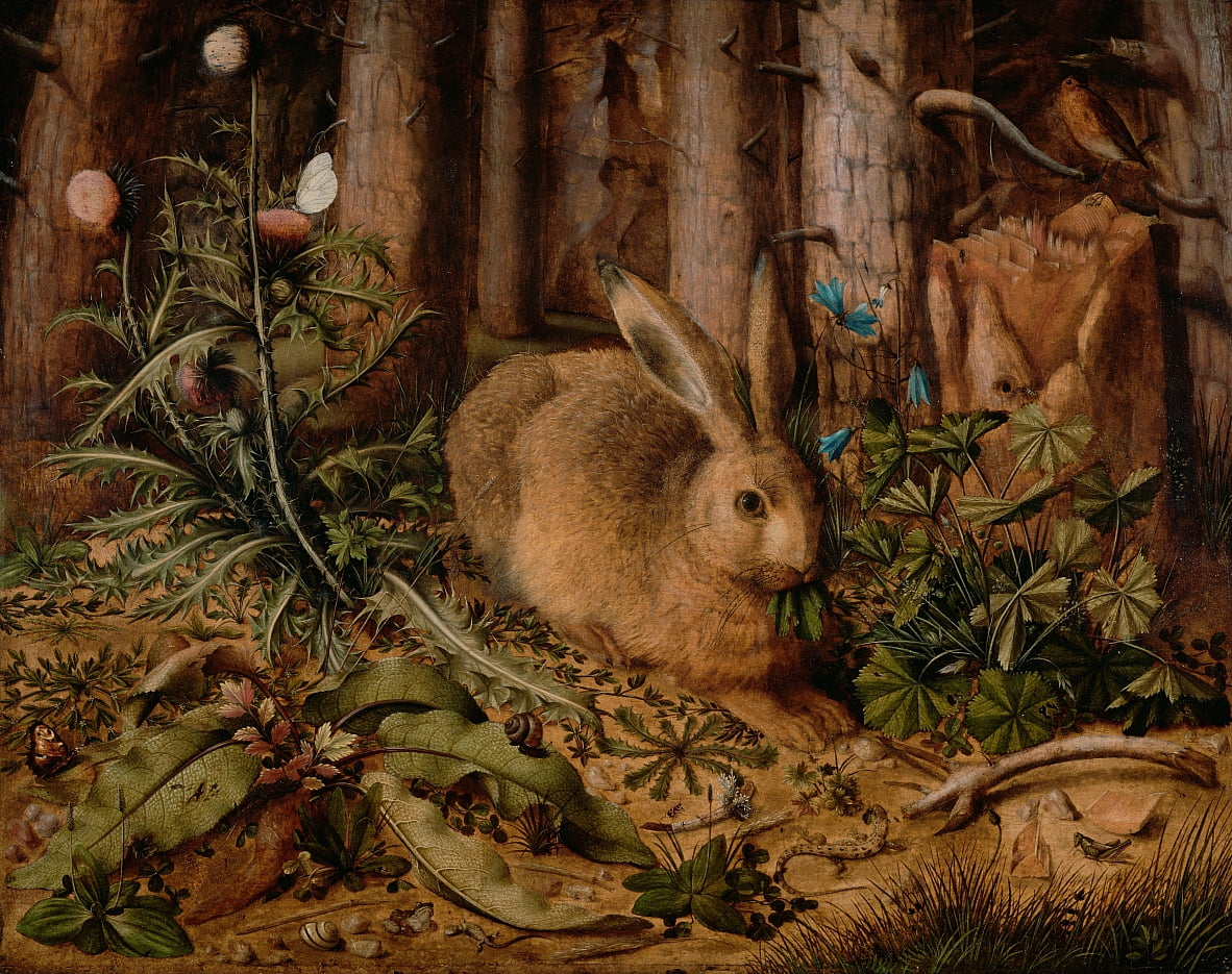 A Hare in the Forest by Hans Hoffmann